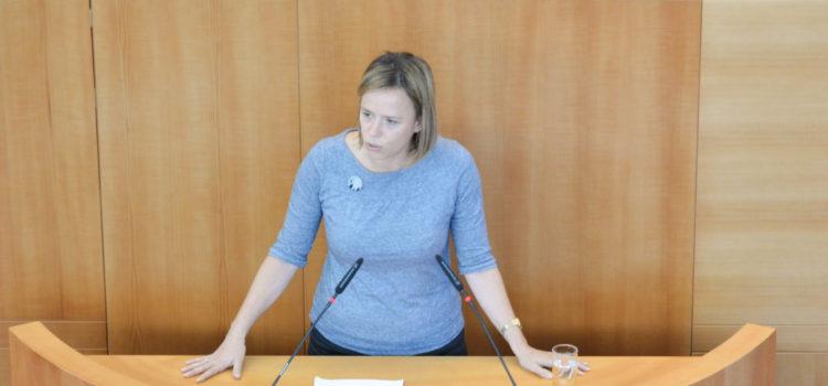 Déclaration de politique générale du Parlement bruxellois – Caroline Désir